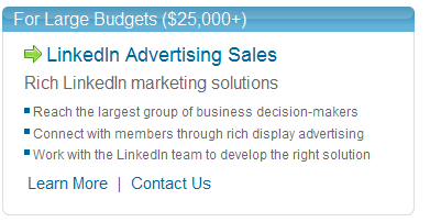 LinkedIn For Large Budgets